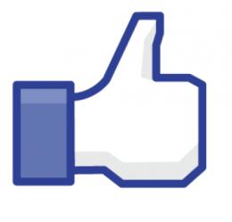 Ab dem späten Vormittag ist bei Facebook am meisten los