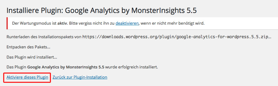 Analytic by Monsterinsights aktivieren