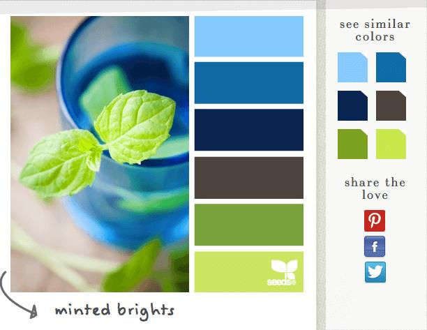 Kräftige Farben, übersichtliche Paletten: Auf design seeds werden täglich Farbtrends aufgegriffen und analysiert.