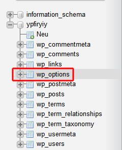 WordPress Datenbank anpassen: Tabelle wp_options öffnen