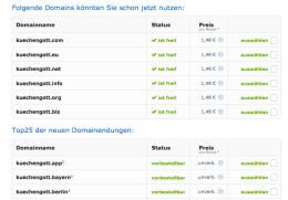 Der Domaincheck ist Pflicht und sollte immer möglichst schnell gemacht werden.