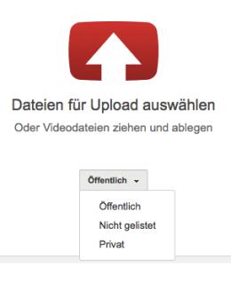 Für alle Nutzer sichtbar oder nur für einen ausgewählten Kreis? Das kannst Du beim Hochladen Deiner Videos einstellen. Screenshot: S. Cantzler
