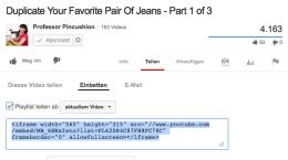 Einbetten leicht gemacht: YouTube liefert Euch einen Code, den Ihr nur noch in Eurem Blog einfügen müsst. Screenshot: S. Cantzler