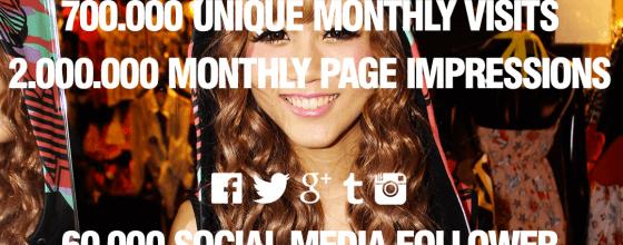 Schrill, laut, plakativ: Das Media Kit von Amy&Pink spiegelt den Style des Blogs und liefetr auf einen Blick alle wichtigen Informationen. Screenshot: Amy&Pink