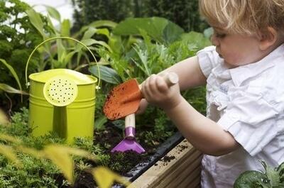 Jäten, graben, gießen, düngen: Genau wie ein Garten braucht auch ein Blog regelmäßige Pflege, damit der Traffic weiterhin gut gedeiht. Foto: panthermedia.net/ joingate