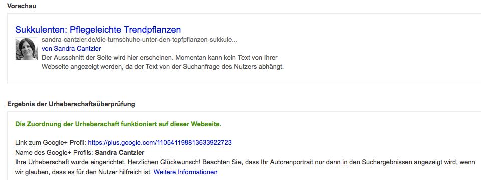 Hat die Registrierung funktioniert, sollte zum gesuchten Artikel in der Vorschau Euer Bild mit den wichtigsten Informationen auftauchen. Screenshot: S. Cantzler