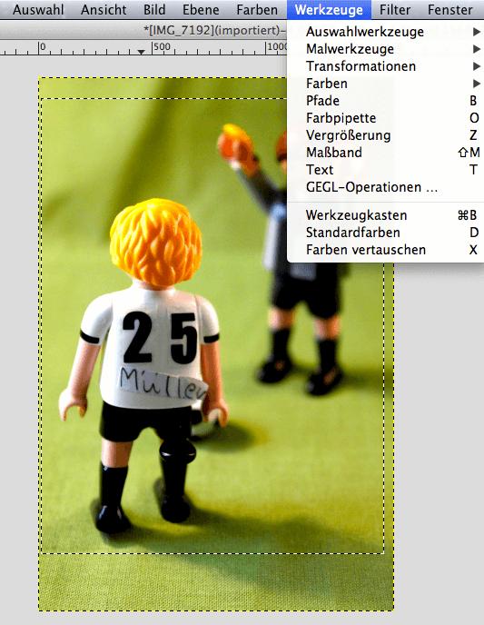 Auf das Wesentliche konzentriert: Mit der Auswahl-Funktion lässt sich ein Zuviel an Hintergrund beseitigen und das eigentliche Motiv rückt in den Mittelpunkt. Screenshot: S. Cantzler