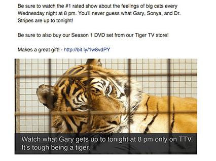 Tschüß Tiger! Für werbliche Postings dieser Art soll im Newsfeed von Facebook künftig weniger bis kein Platz mehr sein. Screenshot: facebook.com