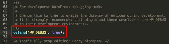 Debug-Modus in der wp-config.php aktivieren.